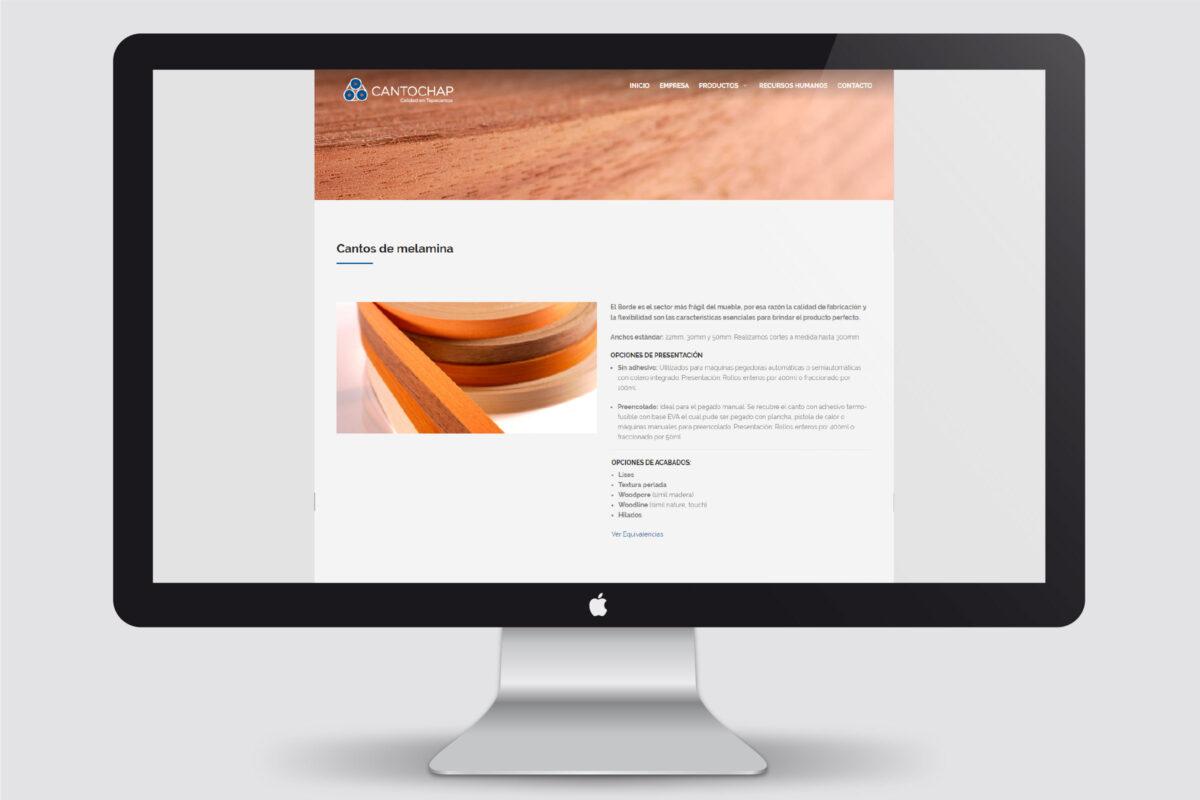monitor con muestra de sitio web